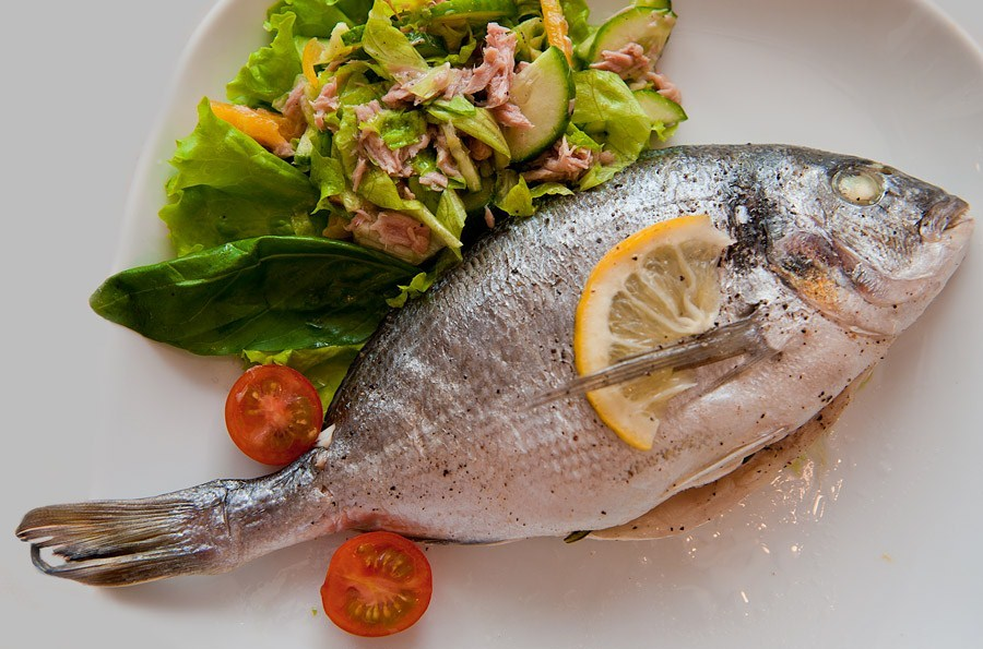 выпуска чем питается рыба дорадо тестирования никак